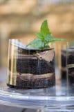 层状的蛋糕巧克力 免版税库存照片