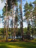居住与吊床-芬兰的湖边 免版税库存照片