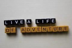 居住冒险生活在木块的 企业和启发概念 库存照片