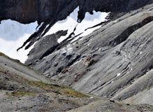 居住在一个高山倾斜的石山羊 库存照片
