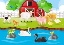 居住在农场的牲口 皇族释放例证