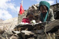 居住在喜马拉雅山, Manang村庄,尼泊尔, 2017年11月的尼泊尔的孩子,社论 库存照片