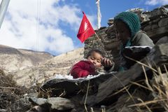 居住在喜马拉雅山, Manang村庄,尼泊尔, 11月2017社论的尼泊尔的孩子 免版税库存照片