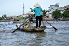 居住在家,湄公河三角洲的房子,越南 库存图片