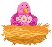 居住在巢的鸟 向量例证