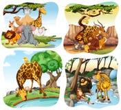 居住在森林的野生动物 皇族释放例证