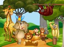 居住在森林的野生动物 向量例证