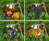 居住在森林的Wid动物 皇族释放例证