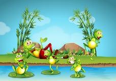 居住在池塘旁边的五只青蛙 库存例证