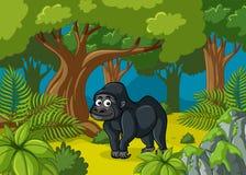居住在深森林的大猩猩 库存例证