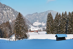 居住在深刻的雪冬天风景的山腰 库存照片