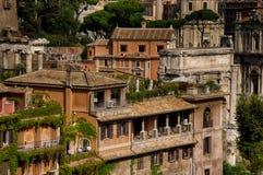 居住在罗马广场里面 免版税图库摄影