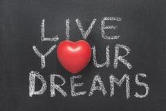 居住您的梦想心脏 免版税库存照片
