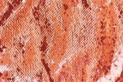 居住珊瑚颜色背景的抽象衣服饰物之小金属片 安置文本 年的颜色2019年 库存照片