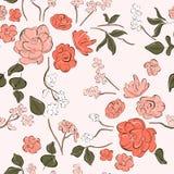 居住的珊瑚花打印 与手拉的植物的植物的无缝的样式 春天夏天纺织品汇集 葡萄酒印刷品 皇族释放例证