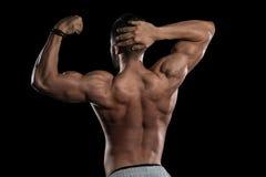 屈曲在黑背景的肌肉模型肌肉 免版税库存照片