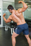 屈曲肌肉的一个肌肉人的背面图 库存图片