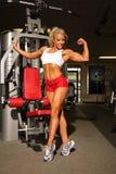 屈曲肌肉的爱好健美者女性 免版税库存图片