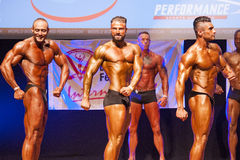 屈曲肌肉的男性爱好健美者在阶段的冠军 库存图片