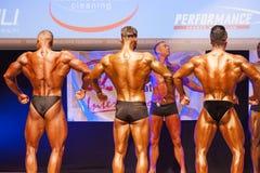 屈曲肌肉的男性爱好健美者在阶段的冠军 免版税图库摄影