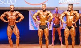 屈曲肌肉的男性爱好健美者在阶段的冠军 免版税库存照片