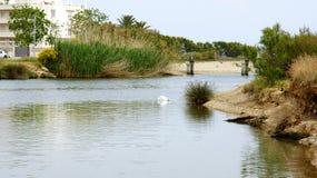 屈贝莱河公园,富瓦河 库存照片