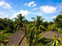 屋顶、天空和稻米视图在Ubud 免版税库存照片