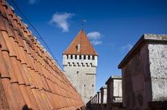 屋顶和防御塔 库存图片