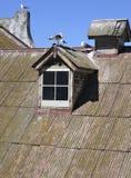屋顶生锈的锡 免版税库存照片