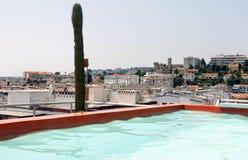 屋顶顶面水池 库存图片