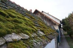 屋顶, Becej,塞尔维亚 库存照片