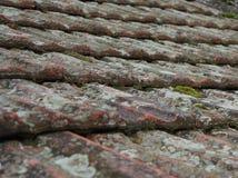 屋顶, Becej,塞尔维亚 库存图片