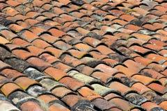 屋顶黏土瓦片  免版税库存图片