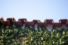 屋顶水泥和叶子 库存照片
