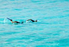屏蔽人同步游泳管二 库存图片