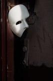 屏蔽化妆舞会歌剧虚拟件 免版税库存照片