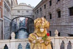 屏蔽,威尼斯狂欢节  库存图片