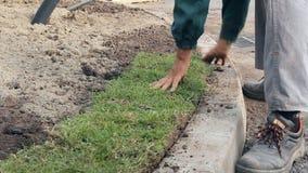 展开的草,应用草皮为新的草坪滚动 影视素材