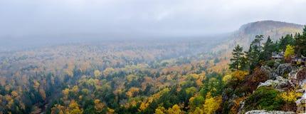 山、森林、河和薄雾 免版税库存照片
