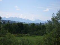 山、森林和天空 库存图片