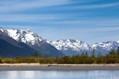山、森林和水 免版税库存照片