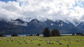 山、河、云彩&绵羊 库存图片