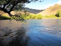 山、主要树和湖美好的风景在圣马丁省de los安地斯,阿根廷 库存照片