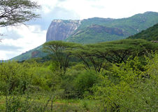 山。风景自然。非洲,肯尼亚。 免版税库存照片