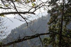 山上方山黄色山,中国的全球性Geopark 库存图片