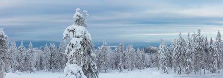 山上面Kachkanar的东部倾斜的全景 免版税库存图片