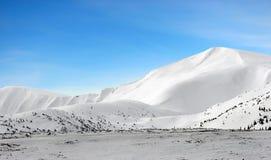 山下雪在冬天之下 免版税图库摄影