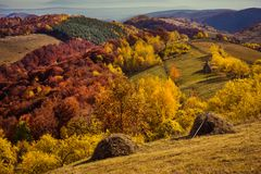 山与五颜六色的森林的秋天横向 免版税库存图片