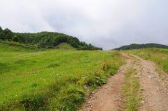 山与绿色森林、蓝色云彩和草甸的Tatra风景 免版税库存图片