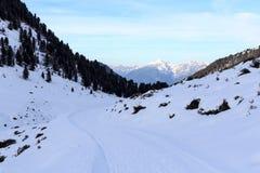 山全景和冷漠的多雪的道路有树的在Stubai阿尔卑斯 库存照片